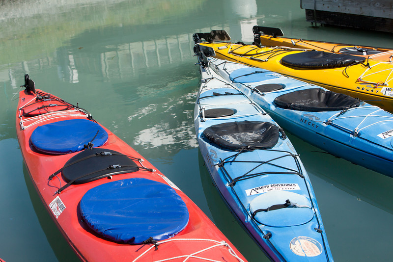 Alaska Copper River-0609.jpg