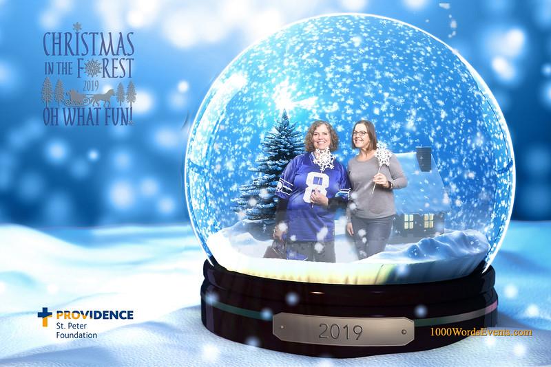 Providence Christmas Forest-002.jpg
