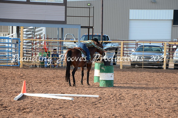 Horse Shows 2015