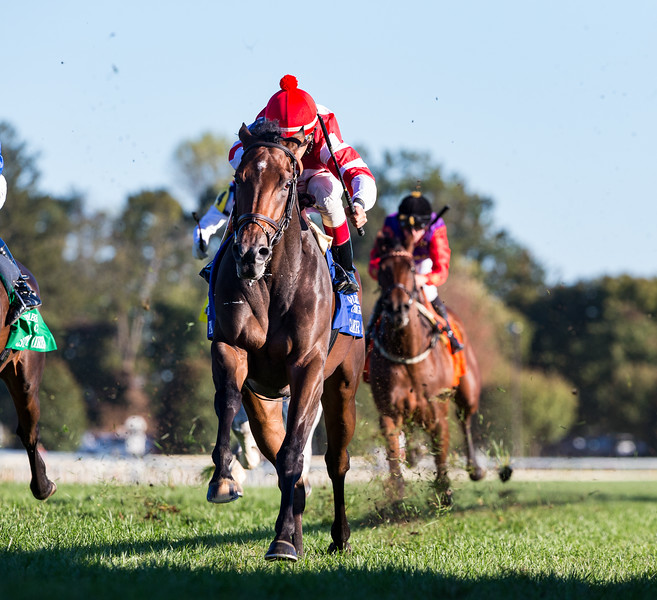 Cambier Park (Medaglia d'Oro), John Velazquez up, wins the Queen Elizabeth II Challenge Cup G1 at Keeneland 10.12.19. Chad Brown, trainer. OXO Equine, owner.