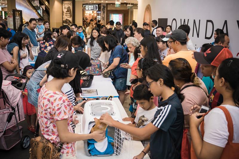 VividSnaps-The-Seletar-Mall-CAT-Dress-Up-Contest-141.jpg
