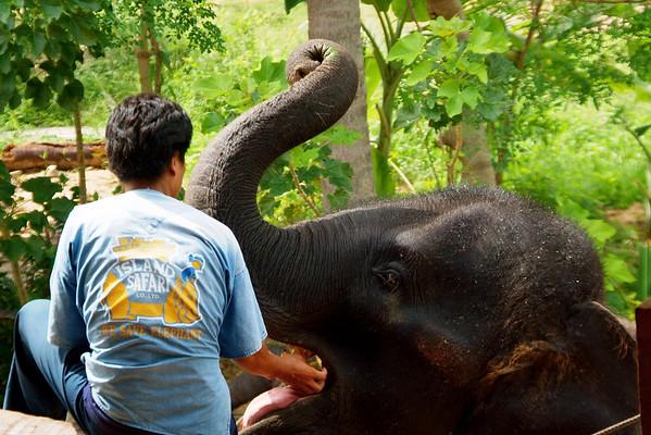 Ko Samui, Thailand -- Mar. 11, 2008  WC (Total 13 days, Seg. 4)