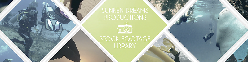 sd-productions-1920x480-stock-footage.png