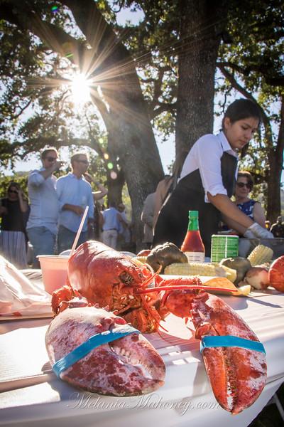 Lobster in the Vineyards 2019