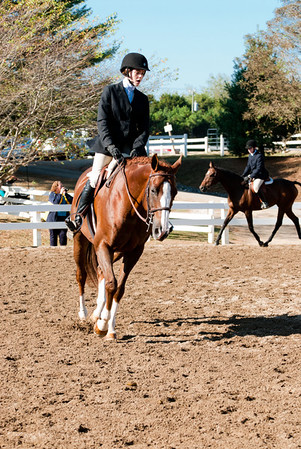 Class 58 - Regular Hunter Horse Under Saddle