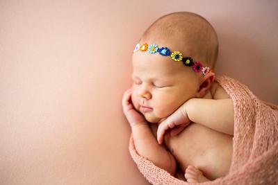 Posed Newborns