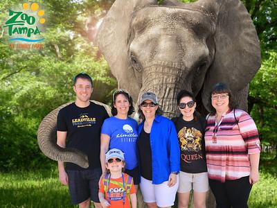 Lowry Park Zoo - Zoo Tampa - Feb 27  2019