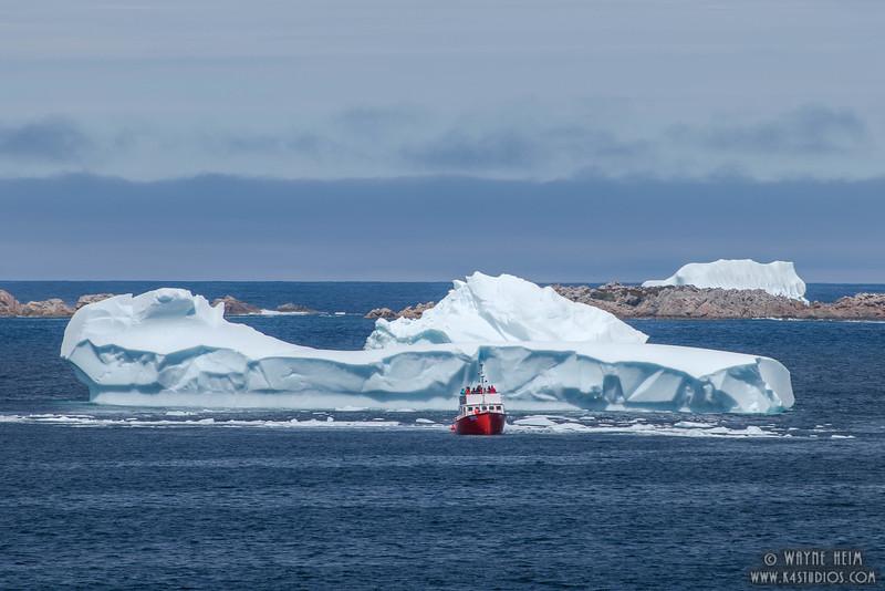 Dwarfed by Ice      Photography by Wayne Heim
