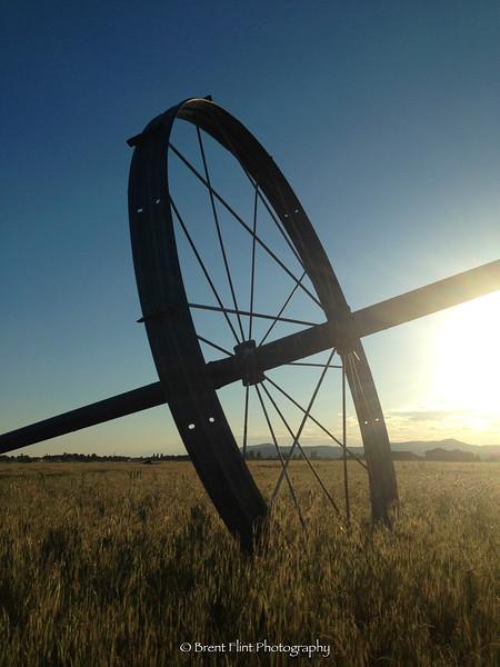 DF.2875 - crop sprinkler wheel at sunset, Rathdrum Prairie, Kootenai County, ID.