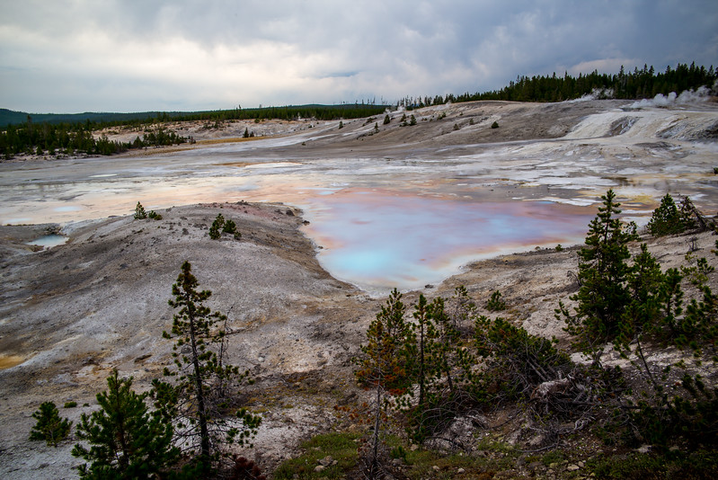 Rainbow Colors, Norris Geyser Basin