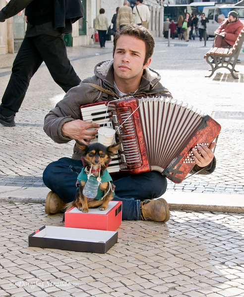 Thur 3/17 in Lisbon: Accordion player and his sidekick