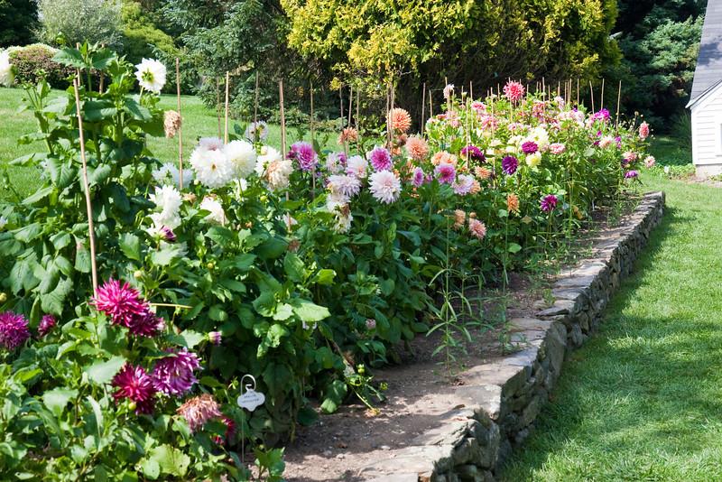 2009 09 06_White Flower Farm_0120_edited-1.jpg