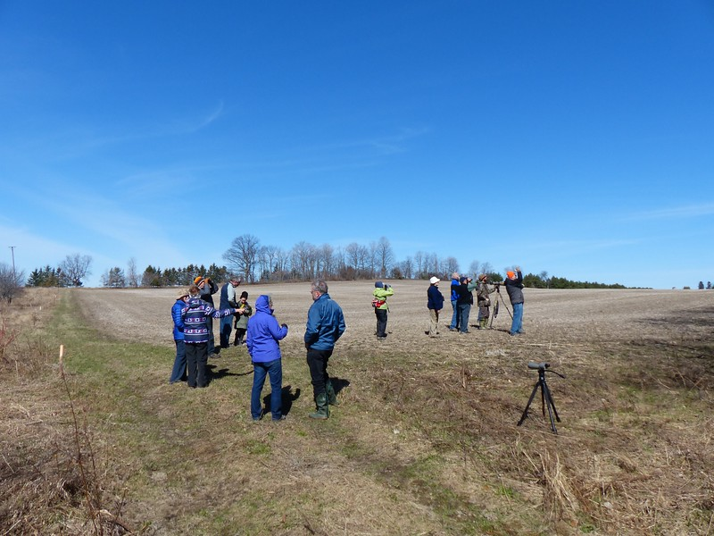 WBFN members birding at Candlewick Woods