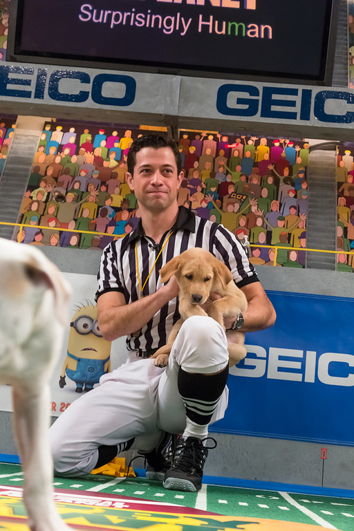 . Referee talks to a dog during Puppy Bowl IX(Photo credit: Animal Planet)