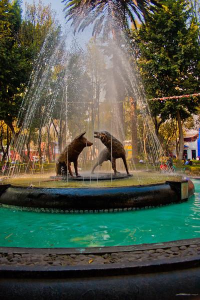 Fuente de los Coyotes: in Mexico City