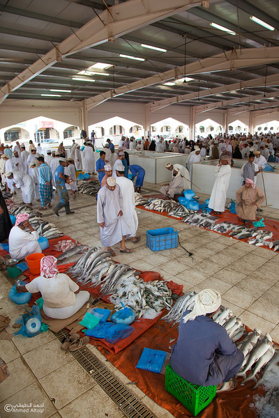 Traditional market (27)- Oman.jpg