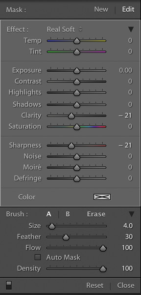 Adjustment Brush Figures