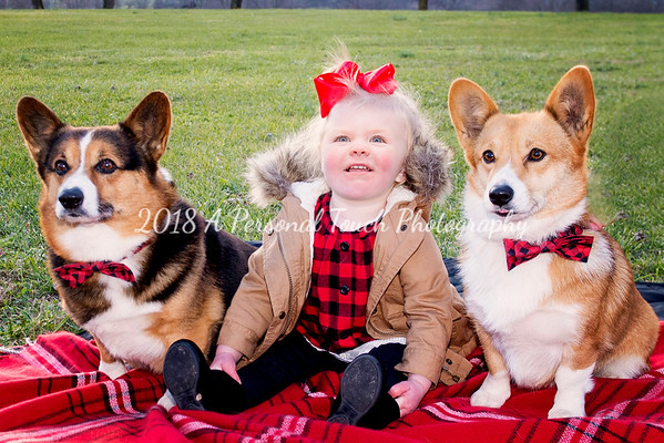 Brynlee and the pups 2018