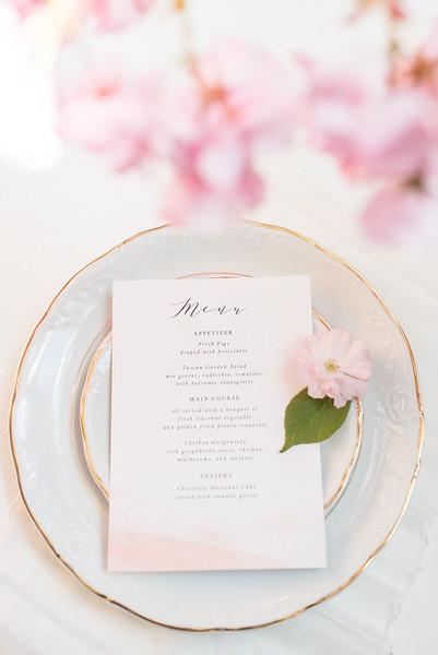 Cherry Blossoms (76 of 182).jpg