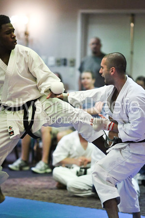 2011 Southern Open Karate Championships