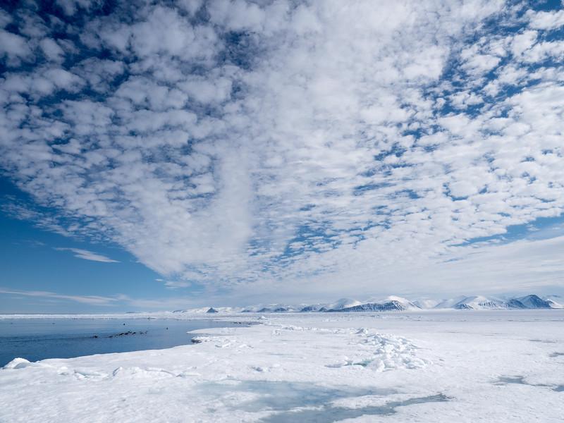 Bylot Island-1030528.jpg
