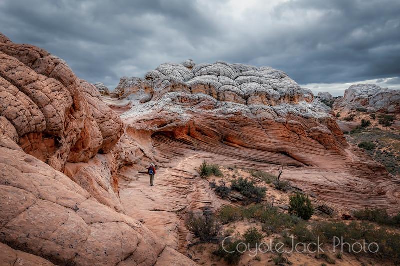Walking through Brainrock