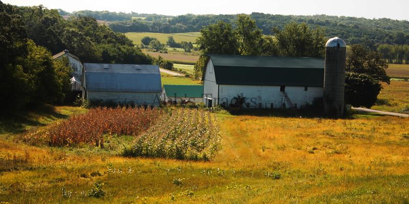 Fmily Farm