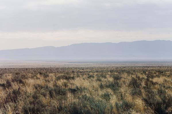 Tirinity Site - 2014