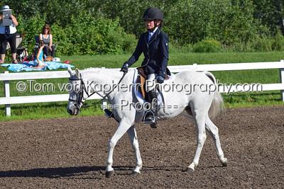 145,146,148,149. Chasseur Petit Poney - Small Pony Hunter