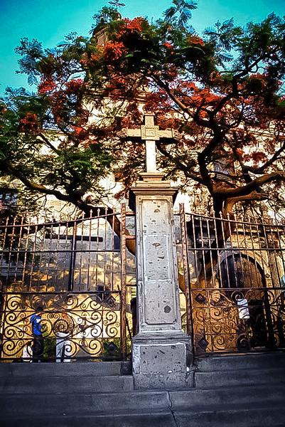Guadalajara-2010_NickJamison_060.jpg