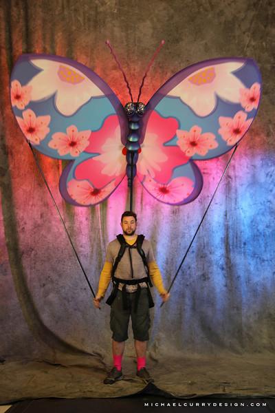USJ Butterfly 1.JPG
