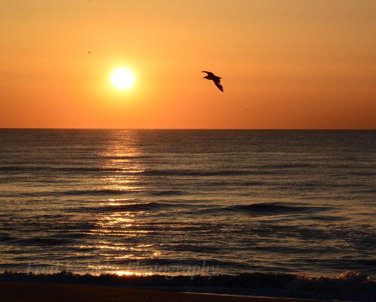 Sunrise 4 05_01_18.JPG