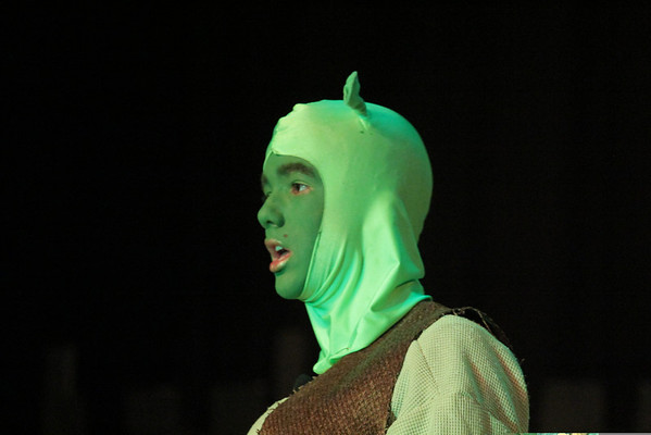 'Shrek The Musical - Hartland School