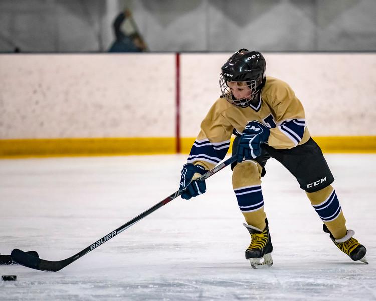 2018-2019_Navy_Ice_Hockey_Squirt_White_Team-90.jpg