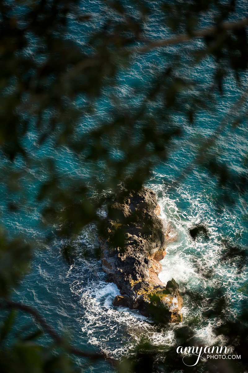 hawaii_amyannphoto_24
