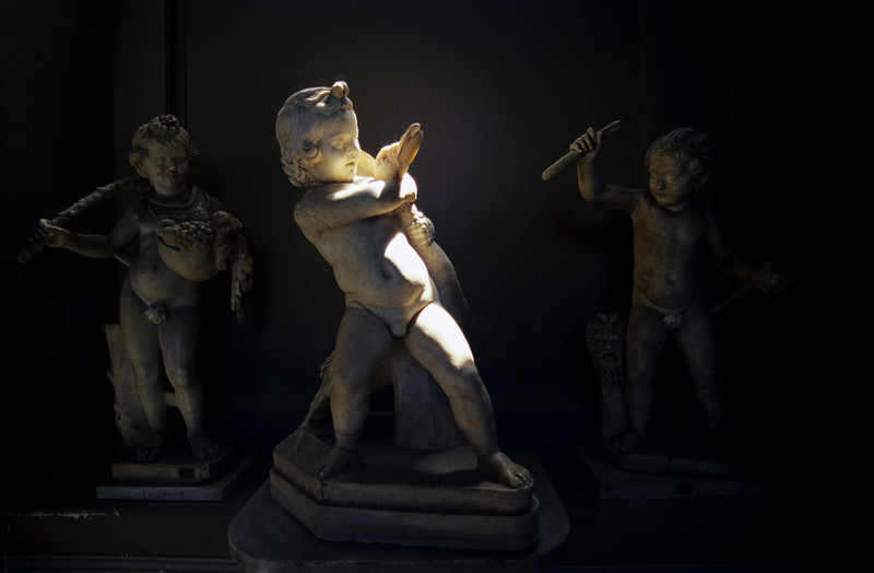Statue of Boy Fighting Goose, Musei Vaticani