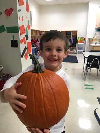 PreKD Pumpkin Exploration