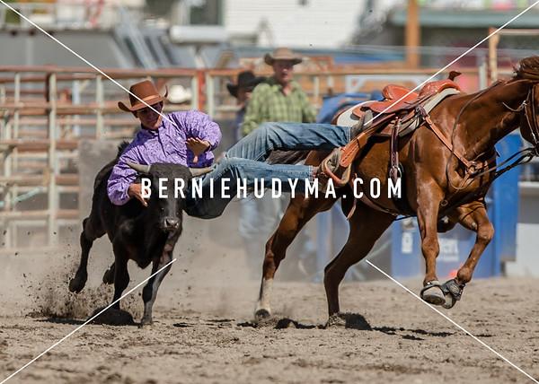 Steer Wrestling  Fri-Sun