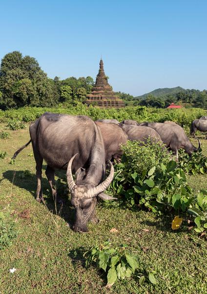 Htuparon Pagoda