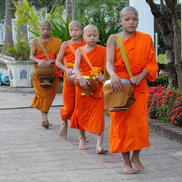 Indochina 2017-00676.jpg