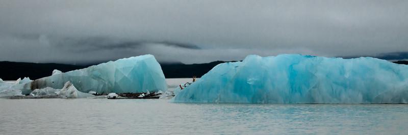 Alaska Copper River-9647.jpg