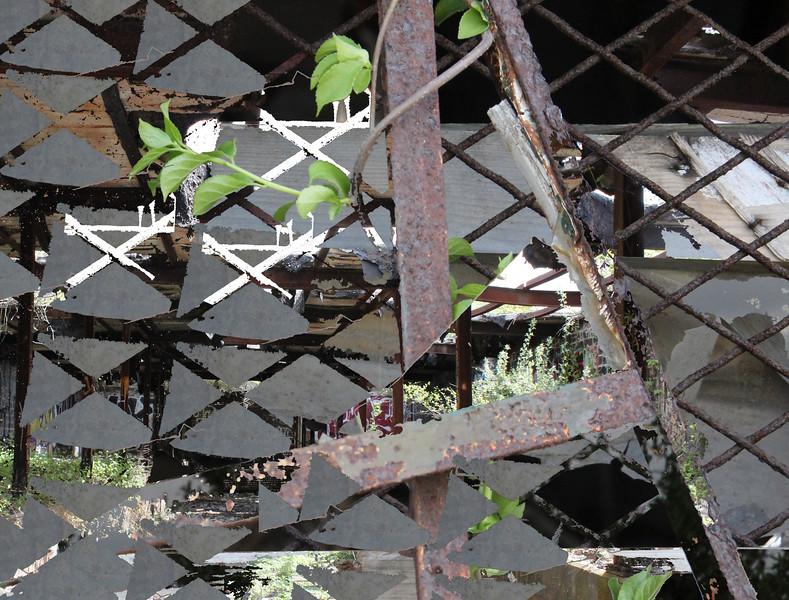 Fort Tilden May 13 2015 083 erasure 2.jpg