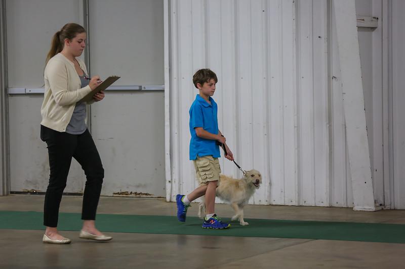 Dog Show-12.jpg