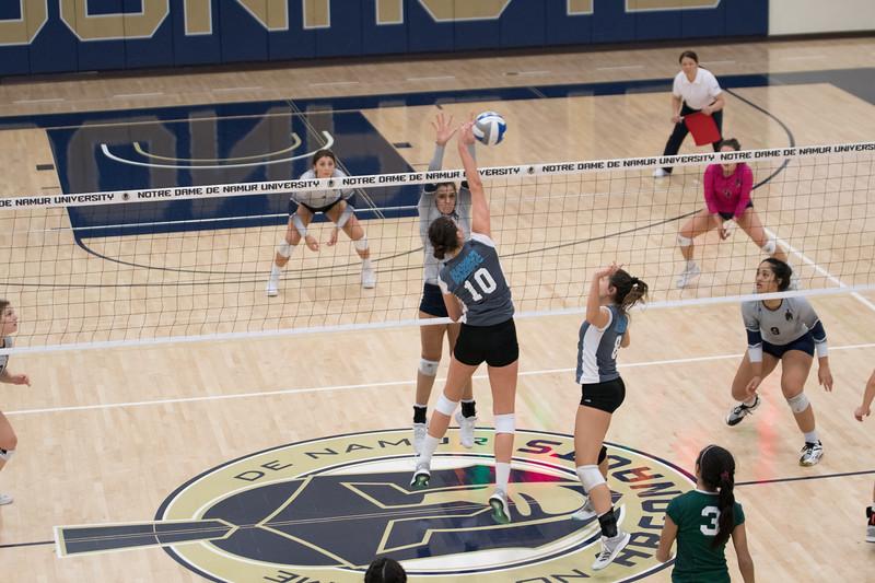 HPU Volleyball-93117.jpg