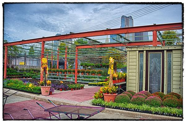 Dallas - Farmers Market - Gardening Area