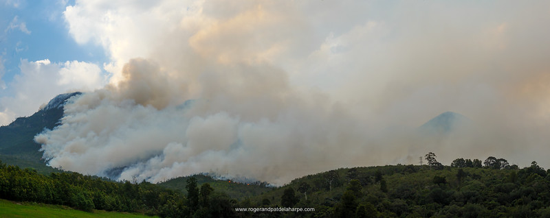 The fire on the Outeniqua Mountains, George. Garden Route. Western Cape. South Africa