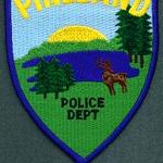Pineland Police