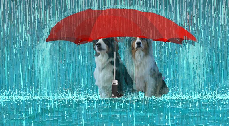 Umbrella.GaWy.jpg