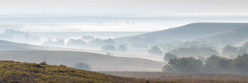 Flint Hills Valley Fog
