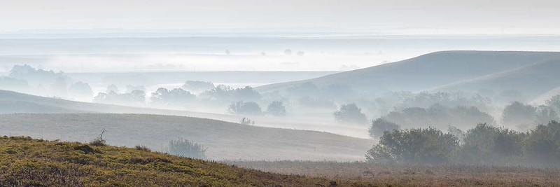 Flint Hills Valley Fog